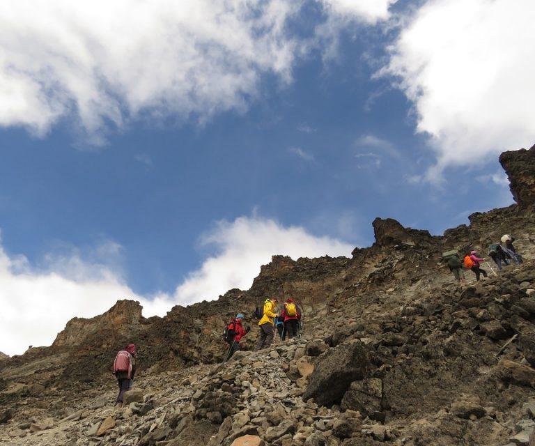8 Days Lemosho Route Kilimanjaro Trek