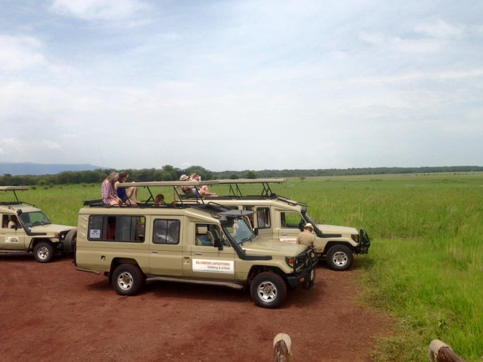 African Safari -- Tanzanian Safari with Safari Heroes
