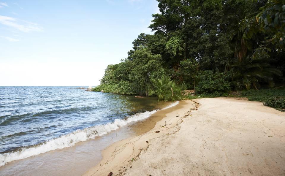 Rubondo-island-beach