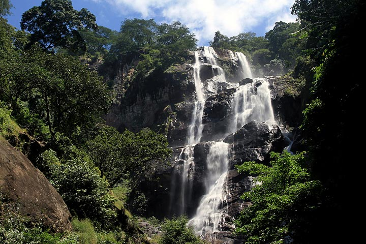 Udzungwa-National-Park-1